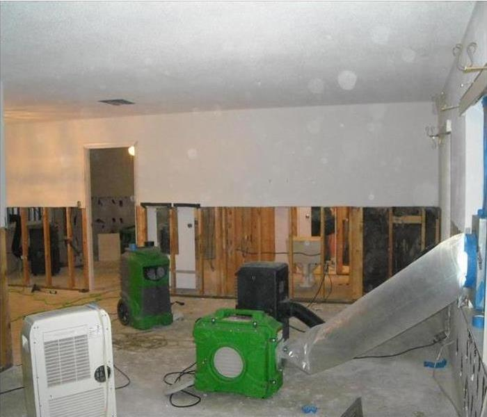 Mold Remediation Does Your Limestone County Home Have A Mold Problem?