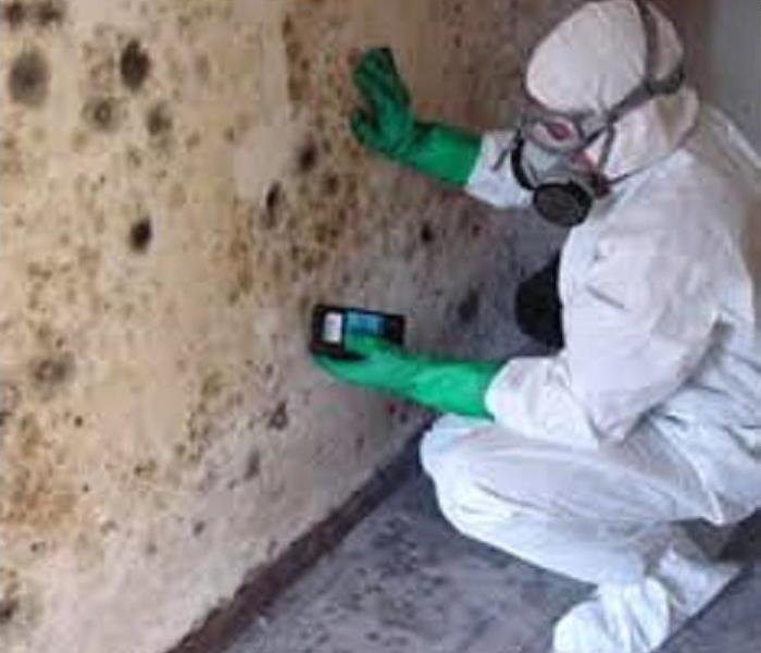 Mold Remediation Mold can be hazardous to your health