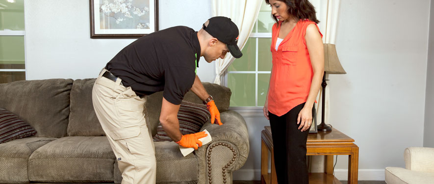Athens, AL carpet upholstery cleaning